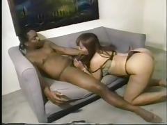 classic scene jasmine 4