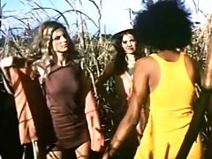 pam grier the large doll house compilation